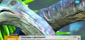 РАЗХОДКА С ДИНОЗАВРИ: Световно признатата продукция гостува в София
