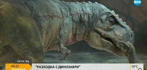 """""""Разходка с динозаври"""" в зала """"Арена Армеец"""" в София"""
