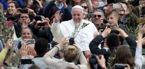 Коя е жената, изработила омофора, с който Франциск отслужи литургия