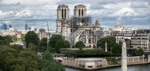 """Изгорелият покрив на """"Нотр Дам"""" е замърсил площада пред катедралата с олово"""