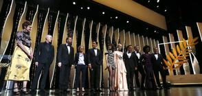 Откриха официално 72-ия кинофестивал в Кан (ВИДЕО+СНИМКИ)