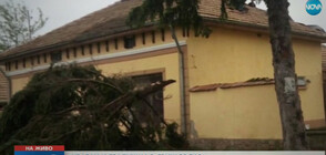 Ураган и градушки нанесоха огромни щети в Свищовско и Карловско (ВИДЕО)