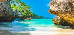 Остров Занзибар – див и неопитомен (ГАЛЕРИЯ)