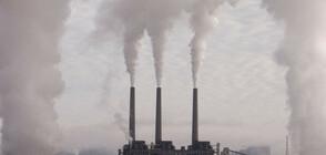 Организация съди Столичната община заради мръсния въздух
