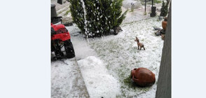 Мощни бури и градушки удариха половин България (ВИДЕО+СНИМКИ)