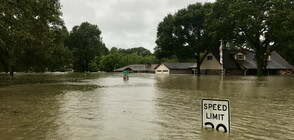 Бури връхлетяха САЩ