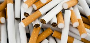 8 000 къса нелегални цигари са иззети от колата на млад мъж от Лом
