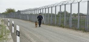 Унгарските гранични власти задържаха 52 мигранти