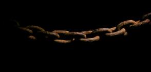 Откриха потъналите останки на последния кораб, превозвал роби от Африка