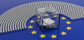 Европейските избори в цифри