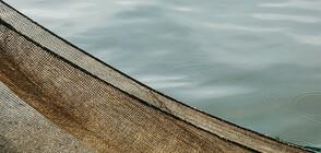 """Извадиха 70 килограма риба от бракониерски мрежи в язовир """"Ястребино"""""""