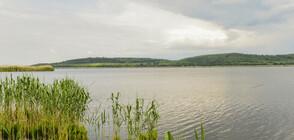 Откриха тялото на 16-годишното момче, което изчезна във водите на река Дунав