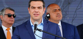 Ципрас иска предсрочни избори в Гърция