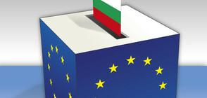 Какъв е профилът на участвалите в евровота?
