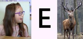 Могат ли децата със синдром на Даун да научат азбуката?