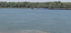 Високите нива на Дунав: И Плевенска област обяви първа степен на опасност