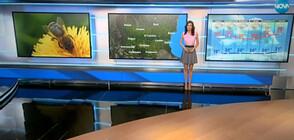 Прогноза за времето (15.06.2019 - централна)