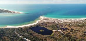 """Специалисти прогнозираха поява на гигантска """"мъртва зона"""" в Мексиканския залив"""