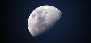Астронавт публикува неизвестна досега снимка на първите хора, кацнали на Луната