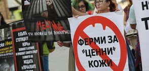 Протест срещу убиването на животни за кожите им (СНИМКИ)