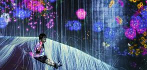 ИЗКУСТВО ОТ БЪДЕЩЕТО: Музей с дигитални произведения привлича милиони хора (ГАЛЕРИЯ)