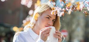 Как да разпознаваме алергиите?