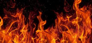 Голям пожар изпепели ферма с 30 000 кокошки в Пещера