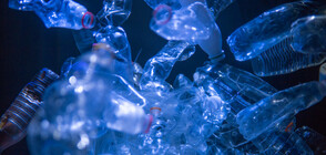 Плаващо устройство почиства от пластмаси Тихия океан (СНИМКА)