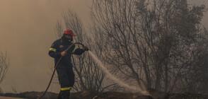 Голям горски пожар на гръцки остров