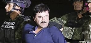 """Наркобаронът """"Ел Чапо"""" е осъден на доживот"""