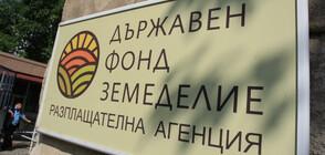 """Пуснаха под гаранция петимата задържани от фонд """"Земеделие"""""""