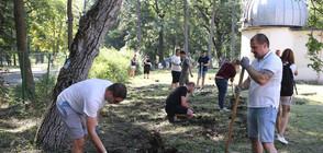До седмици започва реставрация на обсерваторията в Борисовата градина