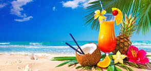 Най-освежаващите летни коктейли (СНИМКИ)