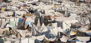 8 европейски страни създават механизъм за разпределение на спасени мигранти