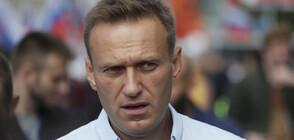 """Навални показа """"малкото царството"""" на Путин на брега на Черно море (ВИДЕО)"""