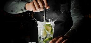 Направи си сам: Най-лесните и свежи коктейли за лятото