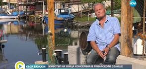 """""""Къси разкази"""": Животът на улица """"Консервна"""" в рибарско селище"""