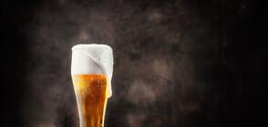 Светът чества Mеждународния ден на бирата