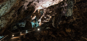 """Опери на Вагнер звучаха в пещерата """"Магура"""" (ВИДЕО)"""