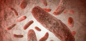 Опасна супербактерия взема все повече човешки жертви (ВИДЕО)