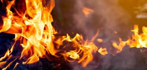 Пожар избухна на метри от хипермаркет във Варна (СНИМКИ)
