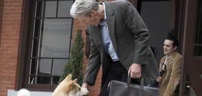 """""""Хачико: Историята на едно куче"""" превзема седмата седмица на """"Великият понеделник"""""""