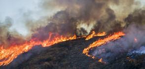 Голям пожар обхвана остров Евия (СНИМКИ)