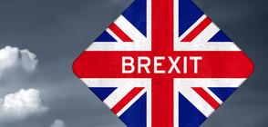 """Великобритания се готви за недостиг на храни, лекарства и гориво при """"твърд"""" Brexit"""