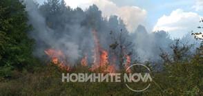 Голям пожар край Реброво, има опасност за гражданите (ВИДЕО+СНИМКИ)