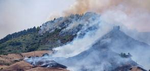 Огромен пожар на остров Гран Канария, хиляди са евакуирани (ВИДЕО+СНИМКИ)