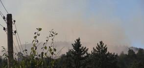 Нов пожар пламна над Реброво