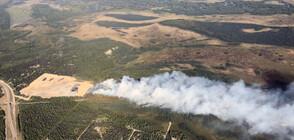 Големи пожари бушуват в Амазонската джунгла и в щата Аляска (ВИДЕО+СНИМКИ)