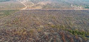 Президентът на Бразилия обвини НПО-та за пожарите в Амазония (ВИДЕО+СНИМКИ)