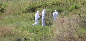 Продължава разследването на мистериозното убийство край Негован